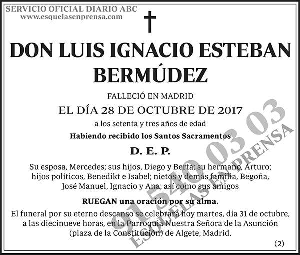 Luis Ignacio Esteban Bermúdez